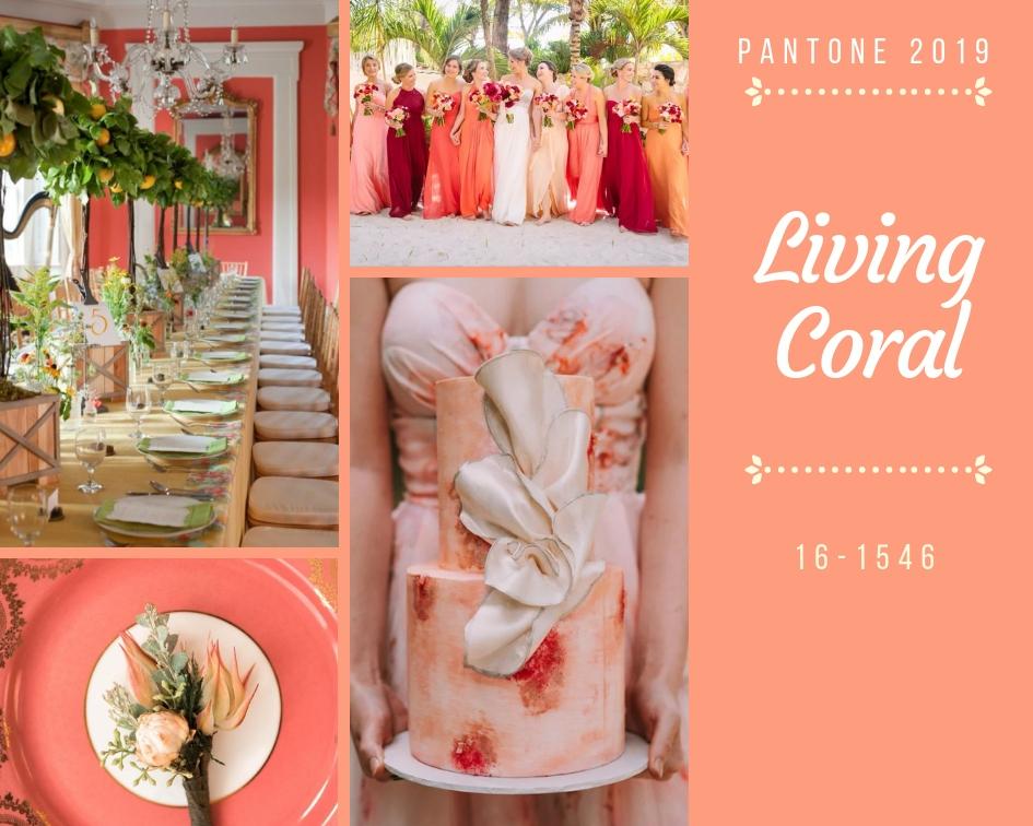 Colore dell'anno 2019 Living Coral